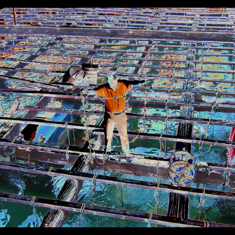 Ladislau da Regueira   Floating marine platform project # Surface grille (2008)