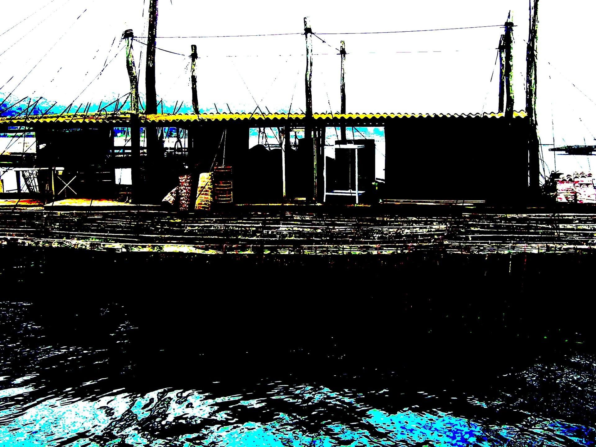 Ladislau da Regueira | Projecto Batea # Batea no Mar (2008)