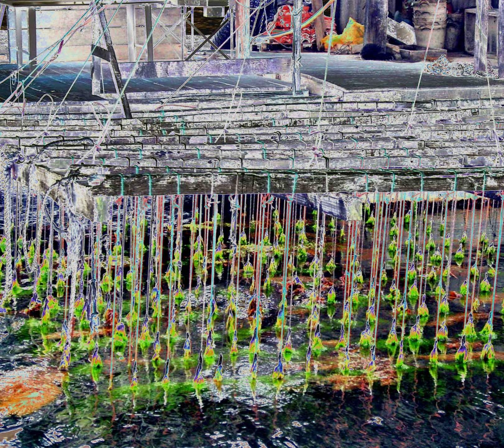 Ladislau da Regueira   Floating marine platform project # Strings (2008)