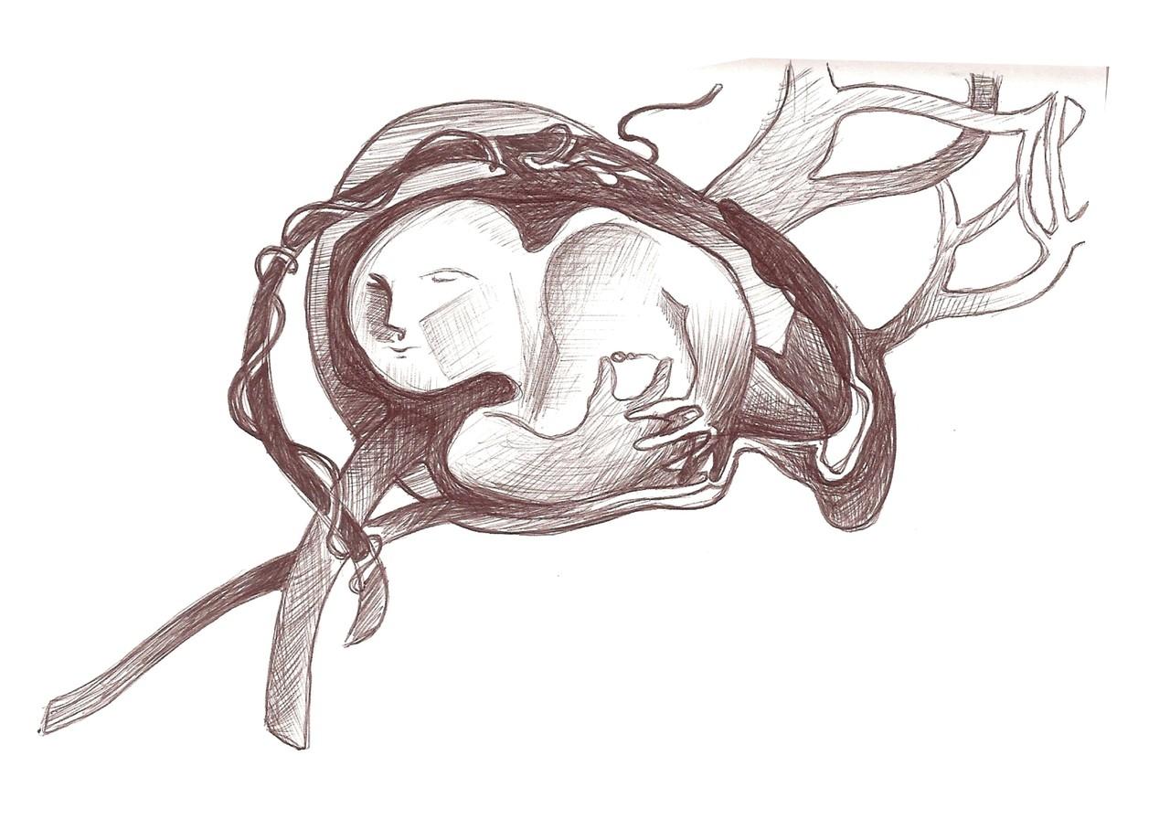 Ladislau da Regueira | Cadernos d'Anotações | O Início da Vida. Acubilhamento (2008)