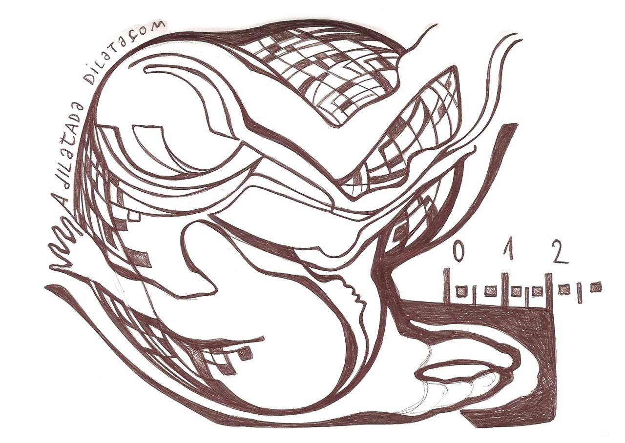 Ladislau da Regueira | Cadernos d'Anotações | O Início da Vida. Saida. Steady (2008)