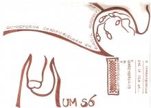 Ladislau da Regueira | Caderno d'Anotações | Corronquelho em perspectiva baixa (1997)
