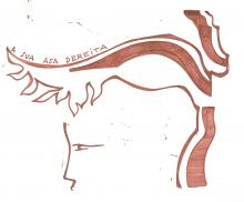Ladislau da Regueira | Caderno d'Anotações | A sua asa dereita (1998)