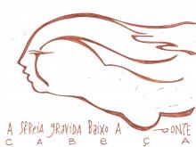 Ladislau da Regueira | Caderno d'Anotações | Sêreia Gravida versus Sêreia Tripeira (1999)
